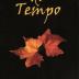 Livro: SULCOS DO TEMPO
